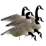 Alpha Wobbler, Magnum Canada Full Form Shell Variety Pack (6pk)