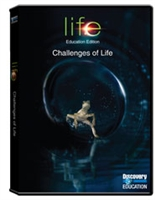 Life: Challenges Of Life