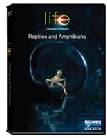 Life: Reptiles And Amphibians
