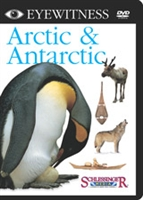 Eyewitness DVD Series: Arctic & Antarctic