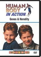 Human Body In Action: Genes & Heredity