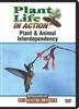 Plant Life in Action: Plant & Animal Interdependency