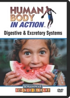 Human Body in Action: Digestive & Excretory Systems