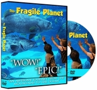 This Fragile Planet - Lots of Animals DVD