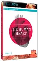 Biology of the Human Body: Human Heart, The