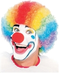 Multi Colored Clown Wig