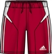 Adidas Campeon 11 Soccer Shorts (Red/White)