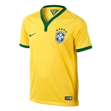 Nike Brasil Youth Home 2014 Replica Soccer Jersey (Varsity Maize)