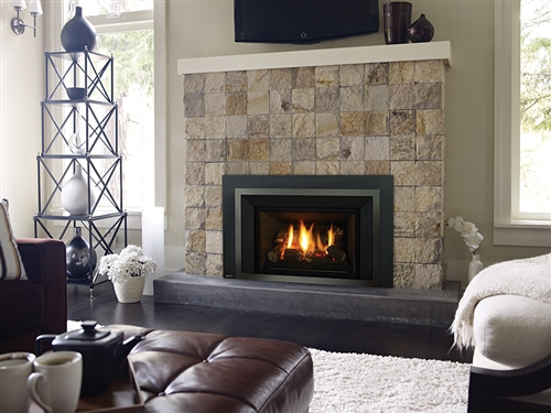 Stoves Pipes.com  Small Gas Fireplace Insert