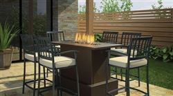 REGENCY PLATEAU PTO30CKT OUTDOOR MODERN GAS FIRETABLE VENTLESS