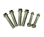 1967-1981 Body Mount Bolt Hardware Kit, Stainless Steel