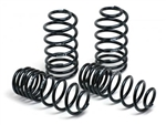 H&R Lowering Springs 2006-2010 Charger w/ Nivomat Shocks