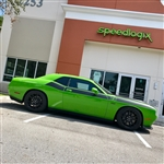 Speedlogix Lowering Springs 2009-2019