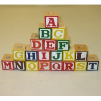 25ct Assorted Alphabet Blocks