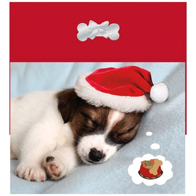 Dreaming Puppy at Christmas
