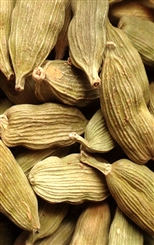 CARDAMOM RAW HERB 4 oz.