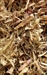 BERGAMOT, WILD RAW HERB 1 oz.