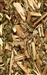 BLESSED THISTLE RAW HERB  1 oz.