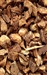 BURDOCK ROOT RAW HERB 1 oz.