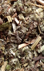 MUGWORT RAW HERB 1 oz.
