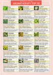 AROMATHERAPY LAMINATED INFORMATION CARD