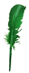 Green Feather Quill
