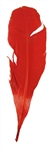 Red Feather Quill
