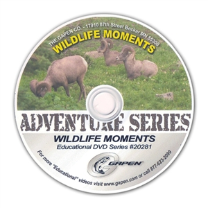 Gapen DVD Adventure - Wildlife Moments