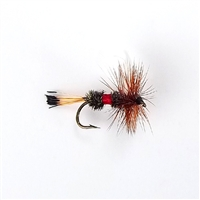 Dry Fly - Royal Coachman