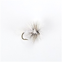 White Wulff Dry Fly