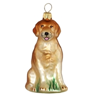 Golden Retriever  2.5""