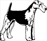 Airedale Terrier memorial graphic