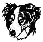 Border Collie Graphic, apetmemorial.com