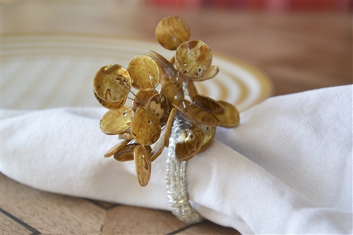 Polished Shell Napkin Ring Set
