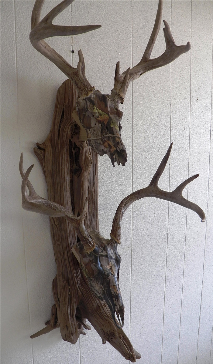 Driftwood Wall Mount For Two Deer