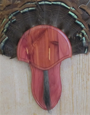 Cedar Turkey Fan Beard Mounting Kit - 02