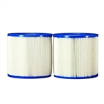 Dynamic Series IV- Replacement Cartridge Filter 35 Sq Ft Total