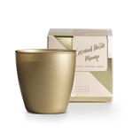 Illume Demi Boxed Candle