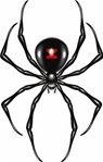 Jointed Spider Cutout - Accessory