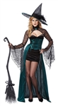 Sexy Enchanted Witch Costume - Enchantress