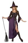 Sexy Salem Witch Costume