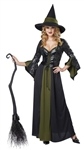 Classic Adult Witch Costume