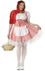 Sexy Red Riding Hood Plus Size Adult Costume
