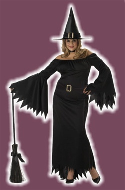 Sexy Plus Size Witch Adult Costume