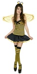Teen Bumble Bee Costume