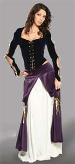 Lady Musketeer Costume - Adult