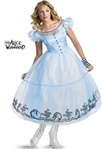 Disney Adult Alice Costume