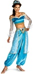 Licensed Jasmine Prestige Adult Costume