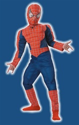Kid's Deluxe Spiderman Costume