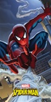 Amazing Spider-Man Banner